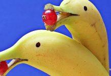 banana delfin