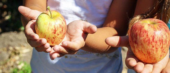 Jabolko.