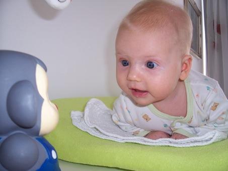 Dojenček pase kravice