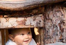 okno_skozi_drva