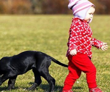 Otrok in pes.