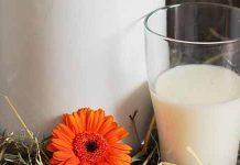 Mleko kravje
