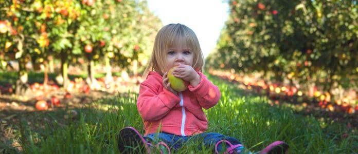 Razvoj malčkovega imunskega spomina